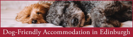 Dog-Friendly Accommodation
